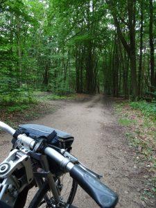 Een mooi stuk door het bos gerold.