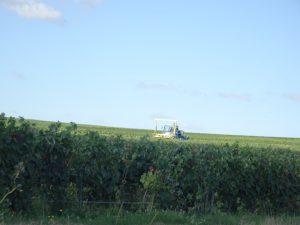 Cormontreuil naar Epernay - champagne tractor