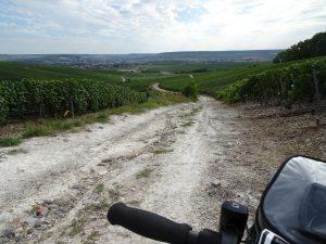 Cormontreuil naar Epernay - pad tussen champagne