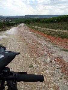 Cormontreuil naar Epernay - pad tussen champagne 2