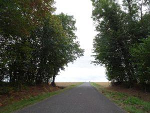 Epernay - Montmort Lucy - bos naar akkers