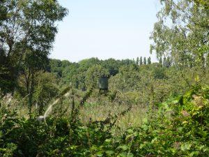 Montmort-Lucy - Sezanne, moeras