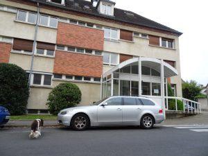 Sezanne naar Mery sur Seine kloosterbejaardenhuis voorkant hond