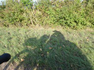 Sommeval naar Flogny-la-chapelle rolstoelpelgrim schaduw