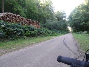 bos en bomen Marigny-l'Eglise naar brassy